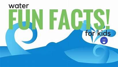 Facts Water Fun