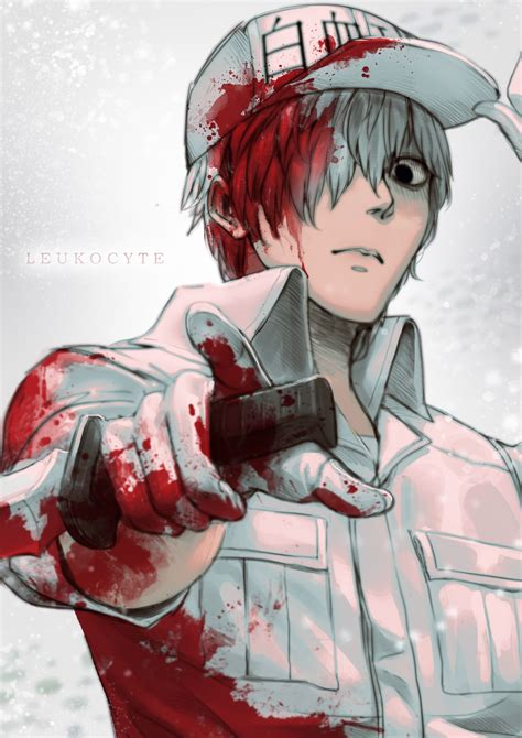 neutrophil zerochan anime image board