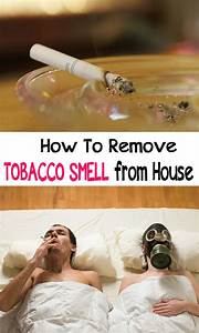 How to remove tobacco smell from house cleaning hacks for How to remove bad smell from house