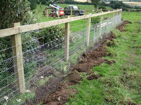 garden fence ideas  rabbits video