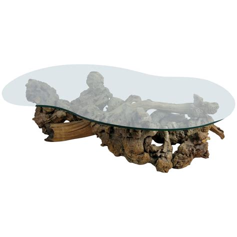 glass top driftwood coffee table large root burl driftwood coffee table with free form glass top at 1stdibs