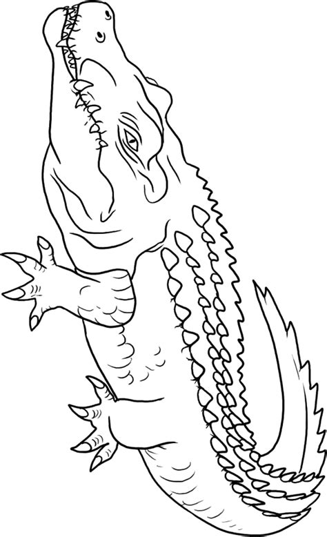 After High Kleurplaat Hanter En Eswing by Crocodile Coloring Pages To And Print For Free