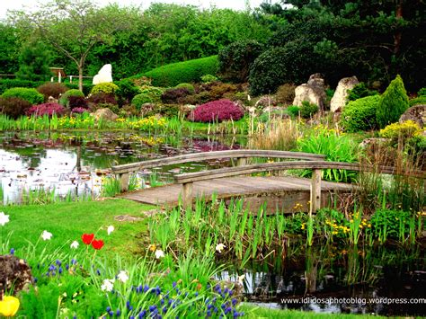 Gardens : Idlidosa's Photo Blog