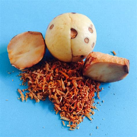 Honig als Stärkungs- und Heilmittel