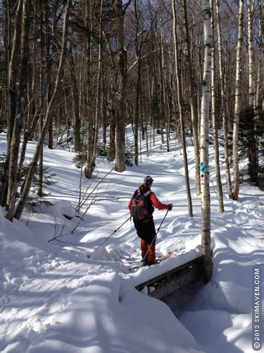 sterling forest trees skimaven skiing the trails in stowe s sterling forest