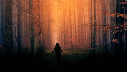 Forest Dark Scary Dream Resolution Wallpapers Quotes