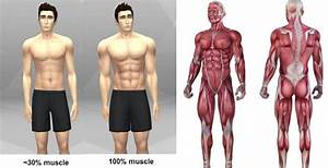 How Long Does It Take To Build Muscle - Skinny Guys Want To Know