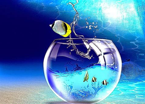 Free Animated Fish Wallpaper Windows 7 - fish jump windows 7 animated best wallpapers