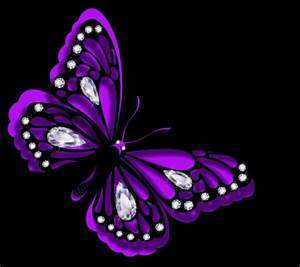 Purple Butterfly - 3D and CG & Abstract Background ...