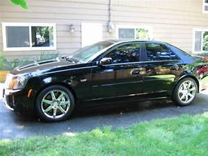 2005 Cadillac CTS V VIN 1G6DN56SX50146294