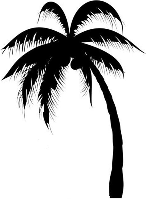 palm tree clipart black and white no background palm tree images designs