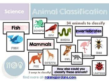 Animal Classification Sorting Activity by Raising Jordans