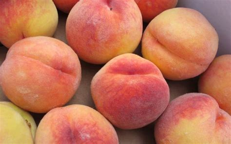 Recipe Grilled Peaches With Infused Honey Ricotta Topping