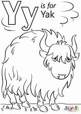 Letter Coloring Yak Pages Cartoon Printable Alphabet Preschool Crafts Outline Super Pluspng Sheets Supercoloring Letters Template Dot Yeti Yoga Print sketch template