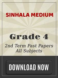 Grade 4 - 2nd Term Past Papers