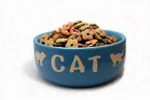 Homemade Cat Food Recipes CDKitchen