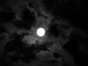 Acrostic Poem on Racial Identity: Moonlight | So, this is me.