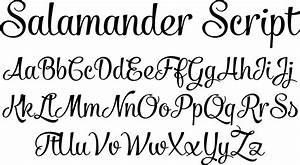 script fonts salamander script font by fenotype font With pictures of script letters