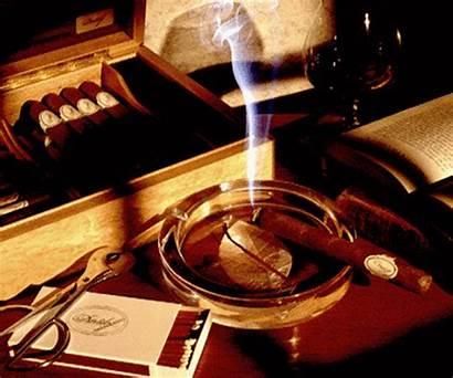 Cigar Cigars Smoking Classy Types Fully Lit