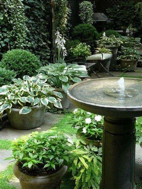 pin  sherry allnutt  garden ideas  images