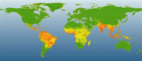 worried  dengue fever   gap year