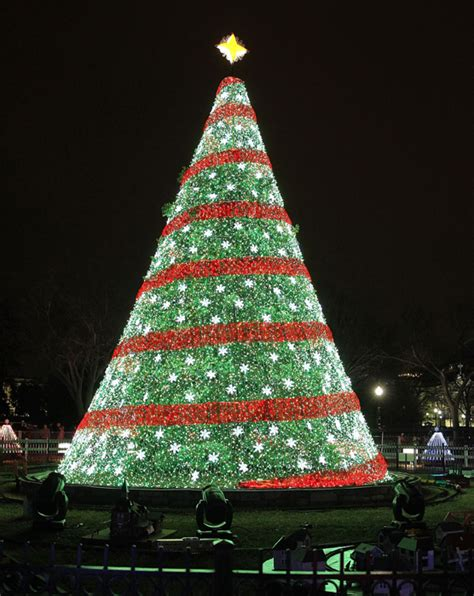 top 10 christmas trees from all over the world photo 10