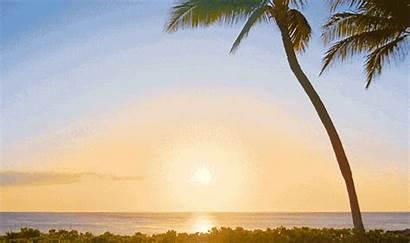 Hawaii Sunset Animated Gifer Dira Derek Hoechlin