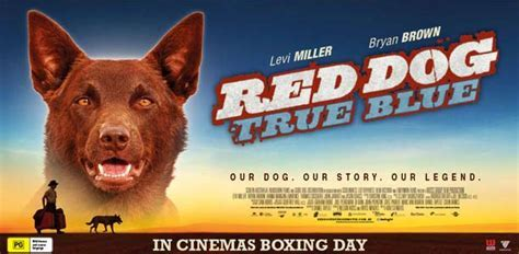 Movie RED DOG: True Blue   Winners   Parenthub
