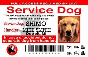 Home wwwsewingnetworknet for Service dog id template