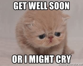 Get Well Memes - get well soon or i might cry super sad cat meme generator