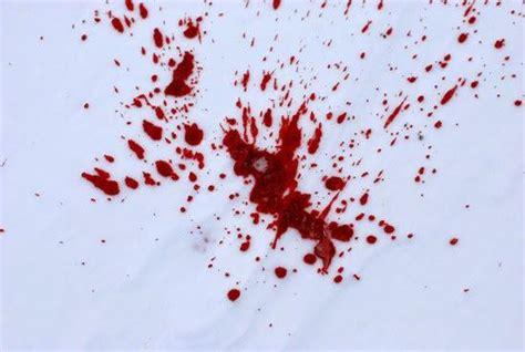 Le Sang Sur La Neige  À Voir