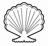 Seashell Coloring sketch template