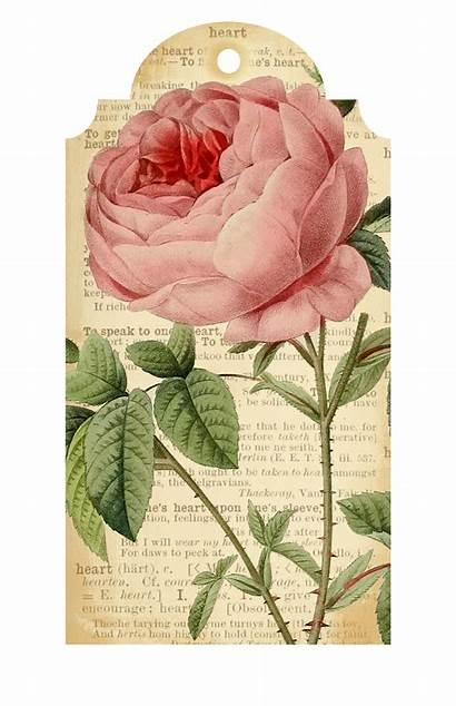 Printable Flower Tags Printables Callmevictorian Valentine Tag