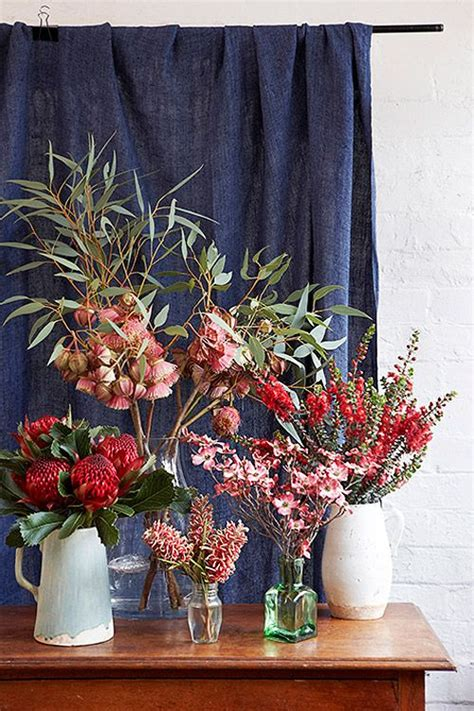 native australian plants tumblr