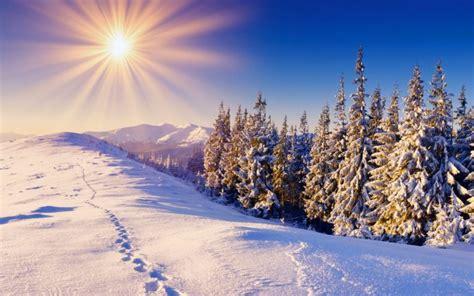 Warm Winter sunny day - Wonderful shiny white snow