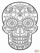 Skull Coloring Sugar Pages Flower sketch template