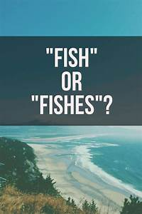 fish or fishes grammar