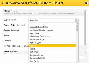Salesforce Visualforce Form