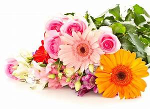Church at Newsong | mothers-day-flowers
