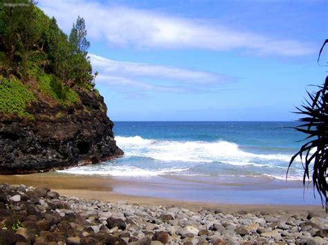 nature kauai hanakapiai beach  picture nr