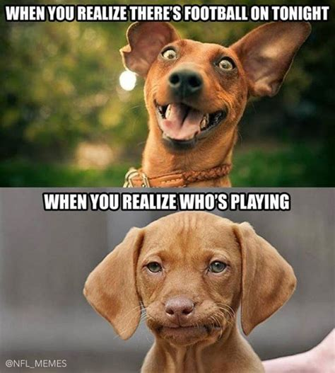 disappointed dog meme sportige