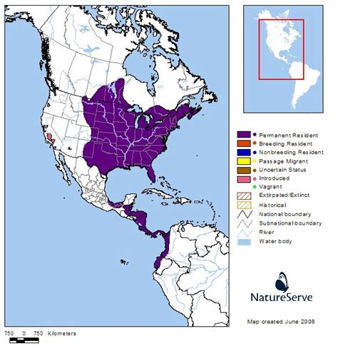 american crocodile range map no evidence for concern 400 15 fall 2012