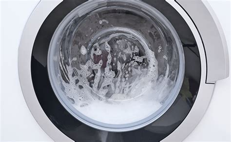 wash  rug   washing machine tiger mechanical