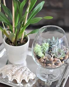 Terrarium Plante Deco : cr er un terrarium plante 20 id es pour r ussir l art ~ Dode.kayakingforconservation.com Idées de Décoration