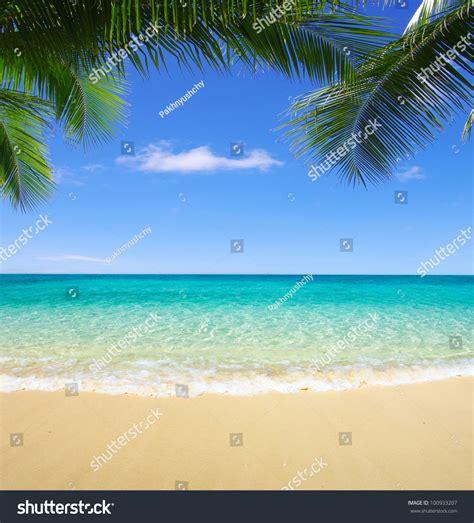 Beautiful Beach Tropical Sea Stock Photo 100933207