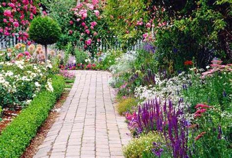 perennials that bloom all summer perennial flowers that bloom all summer uk pictures reference