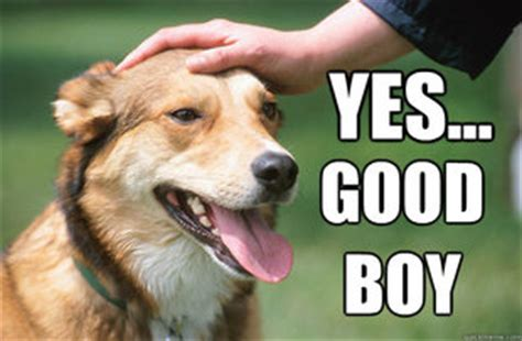 Good Boy Memes - mission possible earn premium time announcements world of tanks official forum page 4