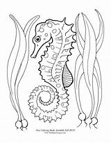 Seahorse Coloring Pages Seahorses Drawing Sea Horse Starfish Printable Beach Google Draw Adult Wood Theinkyoctopus Getdrawings Tattoo sketch template