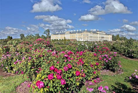 Rožu žogs - Rundāles pils