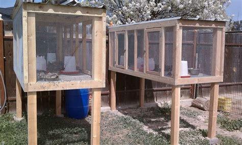 quail hutches 25 best ideas about quail coop on quail